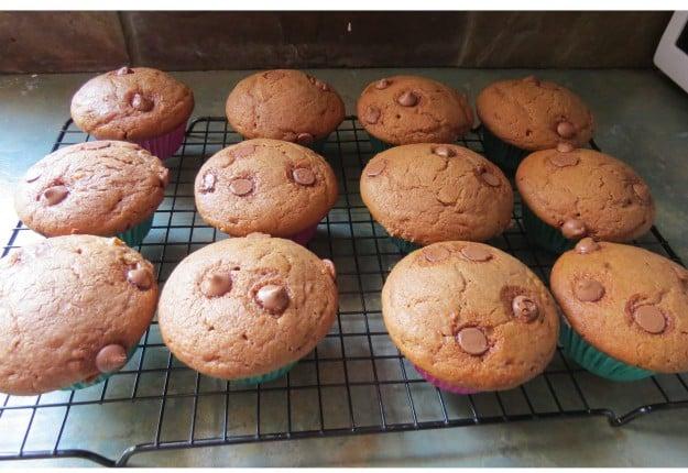 Caramel & Choc-Chip Muffins